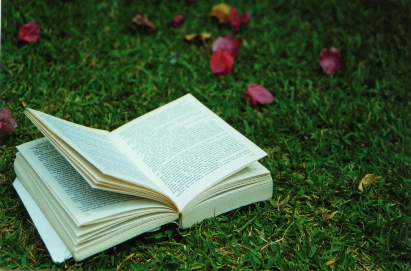 book-and-grass-1478200-1599x1054